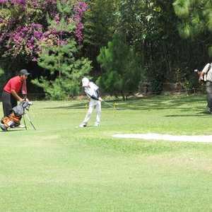 Guatemala CC: Practice area