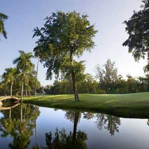 Plantation Club - Pineapple
