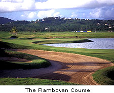 The Flamboyan Course