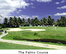 The Palms Course