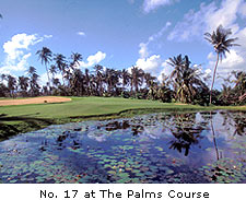 No. 17 at The Palms Course
