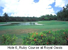 Hole 6, Ruby Course at Royal Oasis