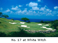 World class golf courses of Jamaica Golf